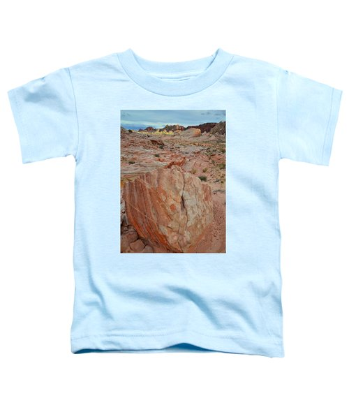 Sandstone Shield In Valley Of Fire Toddler T-Shirt