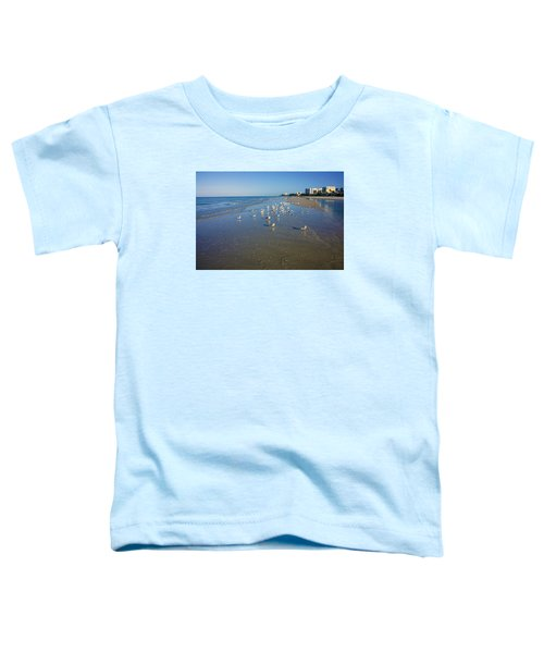 Seagulls And Terns On The Beach In Naples, Fl Toddler T-Shirt