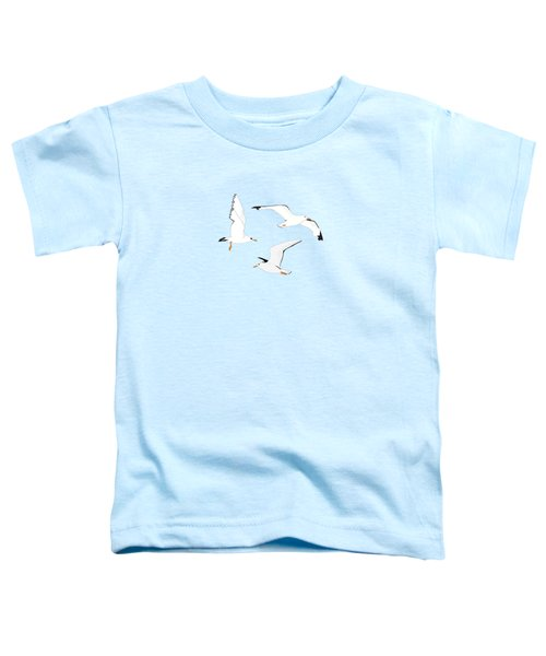Seagulls Gathering At The Cricket Toddler T-Shirt
