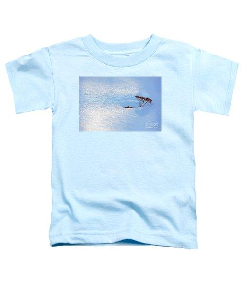 Sedum Sprout In Winter-1 Toddler T-Shirt