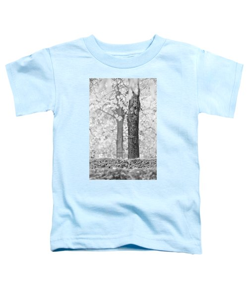 Separate Toddler T-Shirt