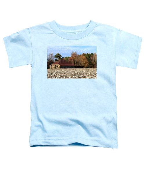 Shack In The Field Toddler T-Shirt