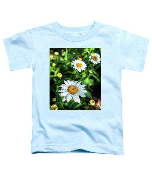 Shasta Daisy Toddler T-Shirt