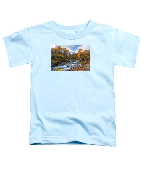 Silverfallet Toddler T-Shirt