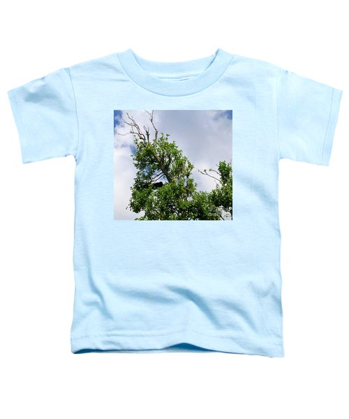 Toddler T-Shirt featuring the photograph Sleeping Monkey 2 by Francesca Mackenney