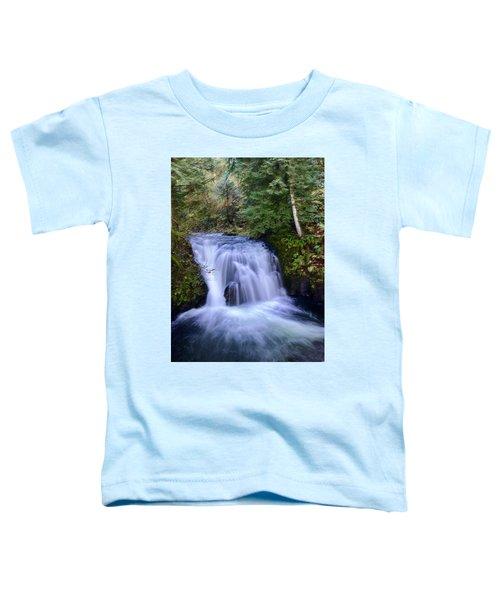 Small Cascade Toddler T-Shirt