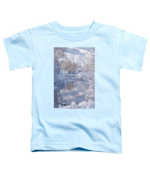 Snow Creek Toddler T-Shirt