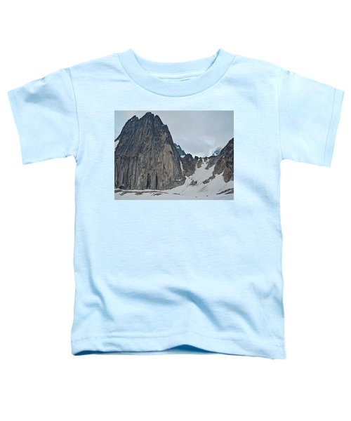 Snowpatch Col Toddler T-Shirt