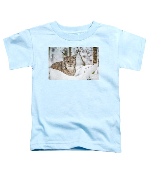 Snowy Lynx Toddler T-Shirt