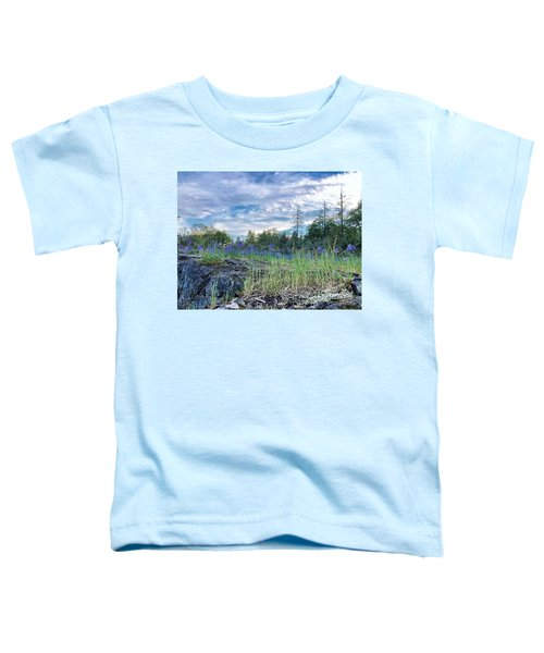 Spring Sky Toddler T-Shirt