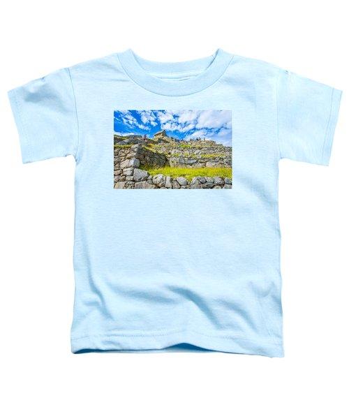 Stone Walls Toddler T-Shirt