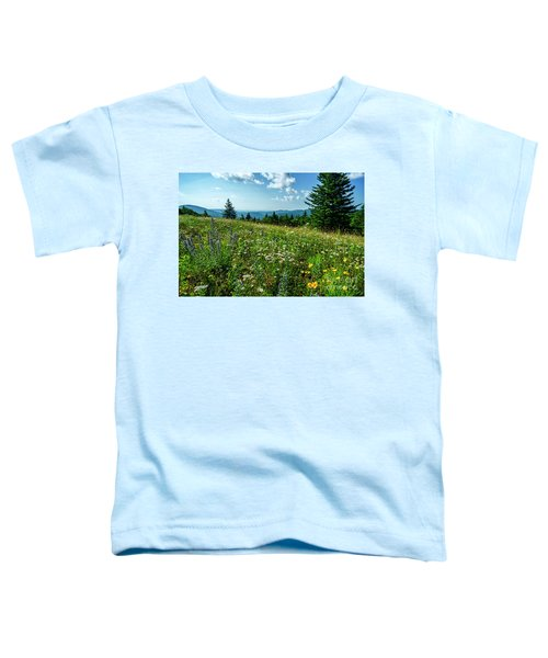 Summer Flowers In The Highlands Toddler T-Shirt