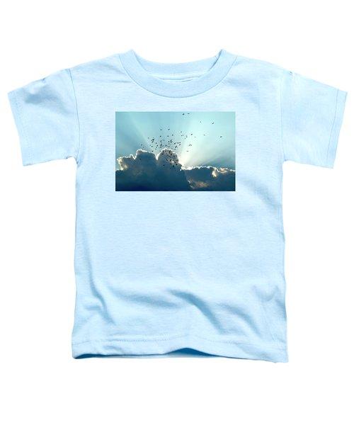 Sun Ray Aerobatics Blue Sky Toddler T-Shirt