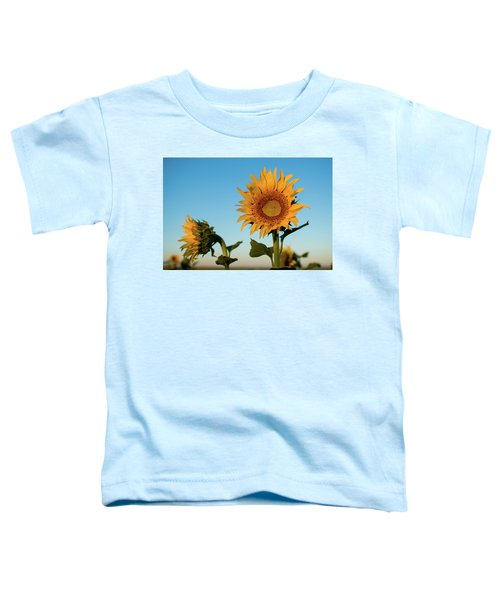 Sunflowers At Sunrise 1 Toddler T-Shirt