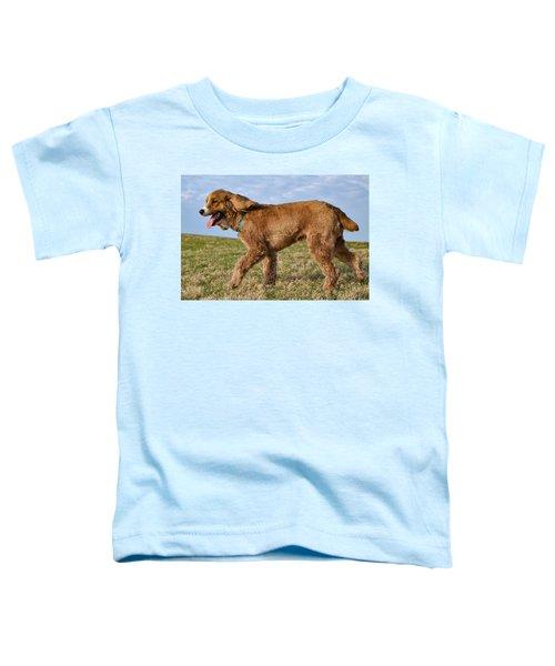 Sunny Stroll Toddler T-Shirt