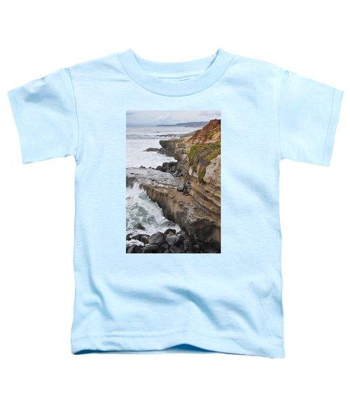 Sunset Cliffs San Diego Portrait Toddler T-Shirt