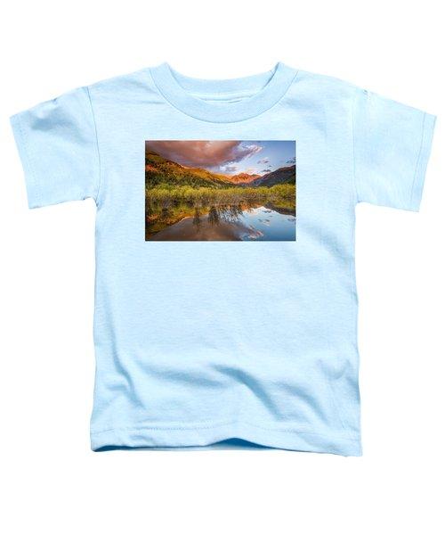 Telluride Valley Floor 2 Toddler T-Shirt