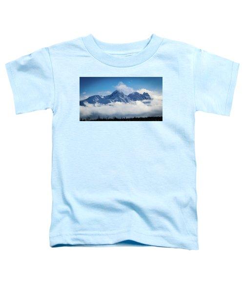The Chugachs Toddler T-Shirt