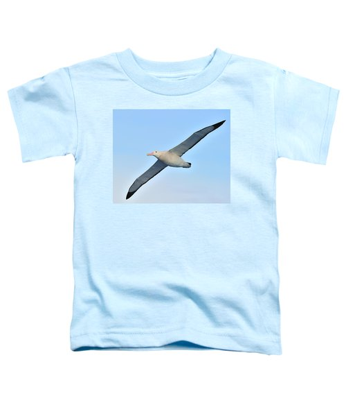The Greatest Seabird Toddler T-Shirt by Tony Beck
