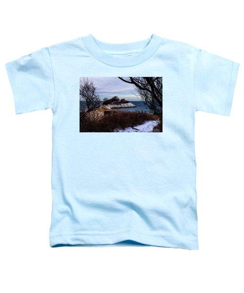 The Knob January 2016 Toddler T-Shirt