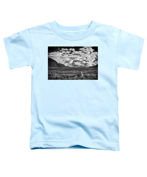 The Meadow  Toddler T-Shirt