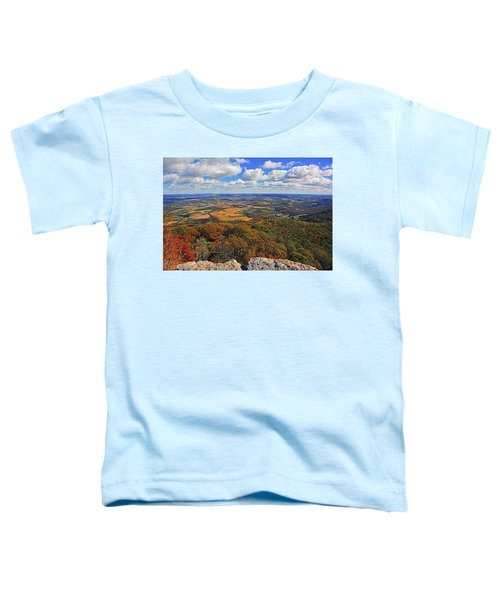 The Pinnacle On Pa At Toddler T-Shirt