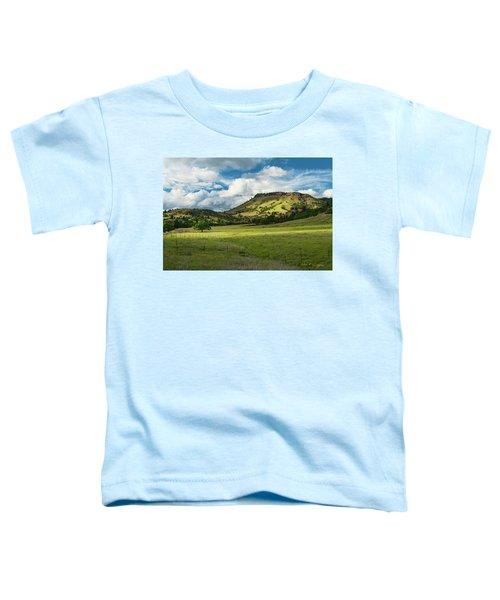 The Reason Toddler T-Shirt