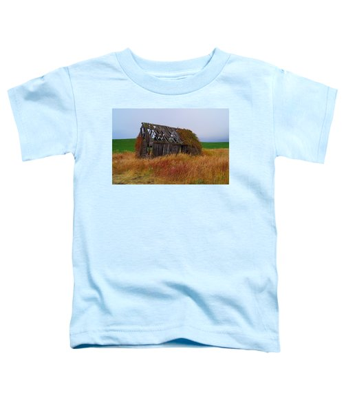 Time Passages Toddler T-Shirt