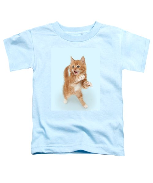 Tiny Tiger Toddler T-Shirt
