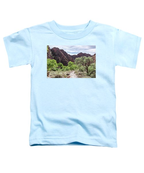 Trail Into Phantom Ranch, Grand Canyon Toddler T-Shirt