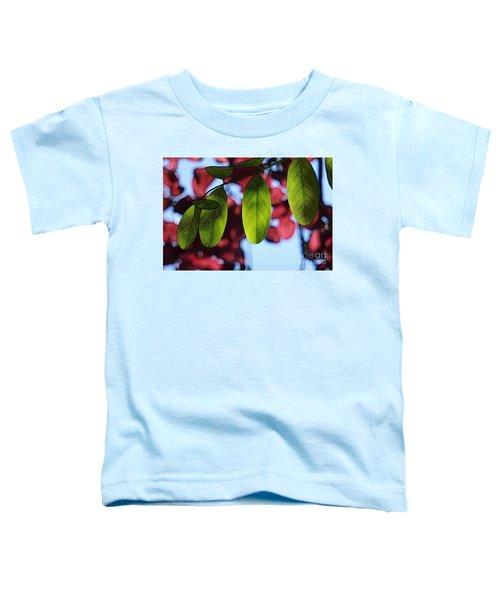 Transparence 21 Toddler T-Shirt