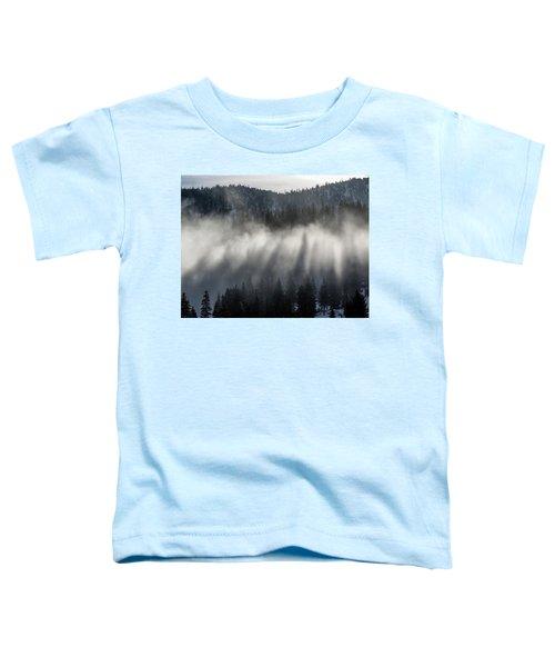 Tree Shadows Toddler T-Shirt