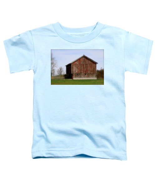 Turkey Vultures Hovering Around The Barn Toddler T-Shirt