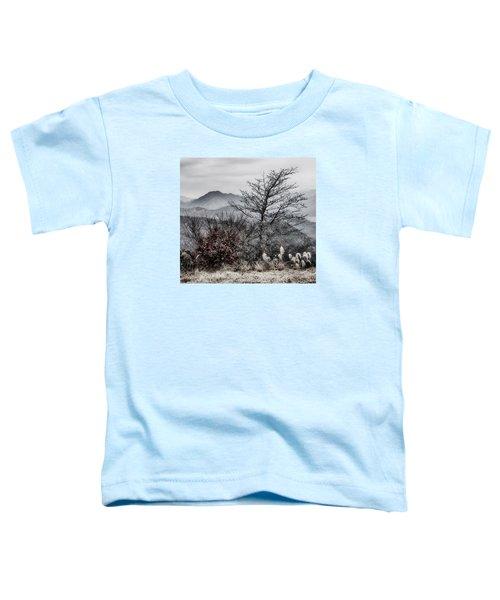 Two Toddler T-Shirt