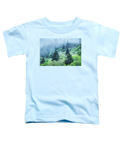 Verdant Forest In The Great Smoky Mountains Toddler T-Shirt
