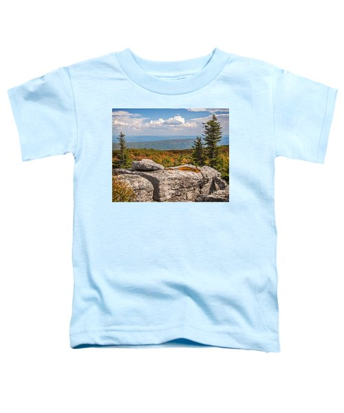 View From Bear Rocks 4173c Toddler T-Shirt