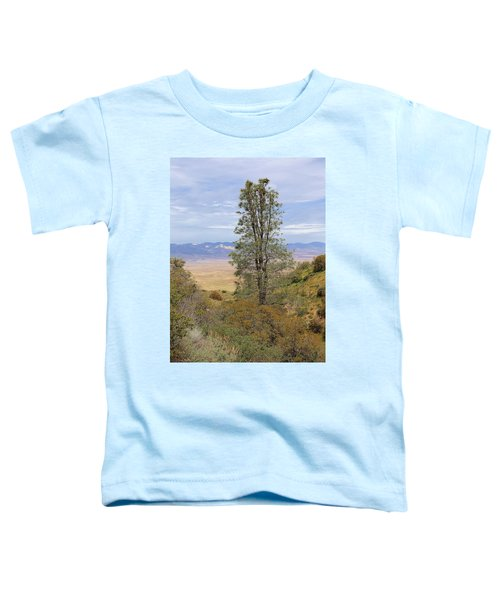 View From Pine Canyon Rd Toddler T-Shirt