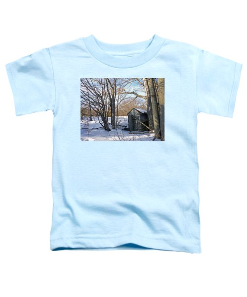 View Of The Past Toddler T-Shirt