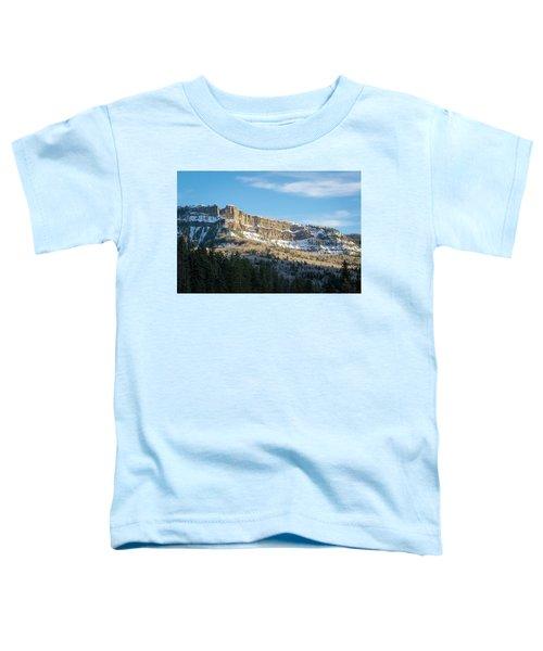 Volcanic Cliffs Of Wolf Creek Pass Toddler T-Shirt