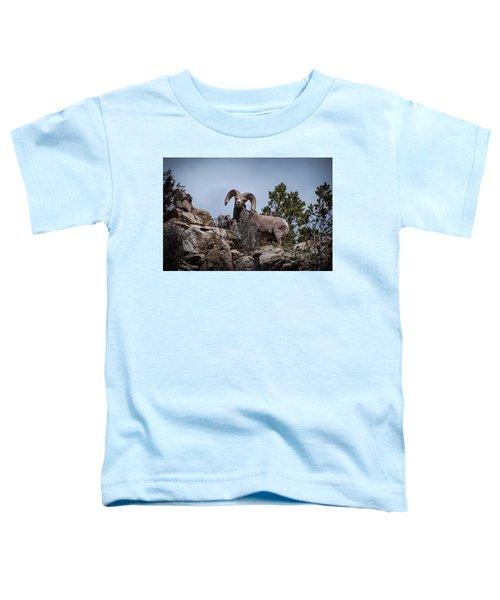 Watching You Watching Me Toddler T-Shirt