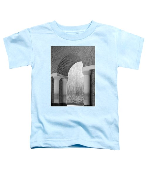 Waterwall And Arch 3 In Black And White Toddler T-Shirt