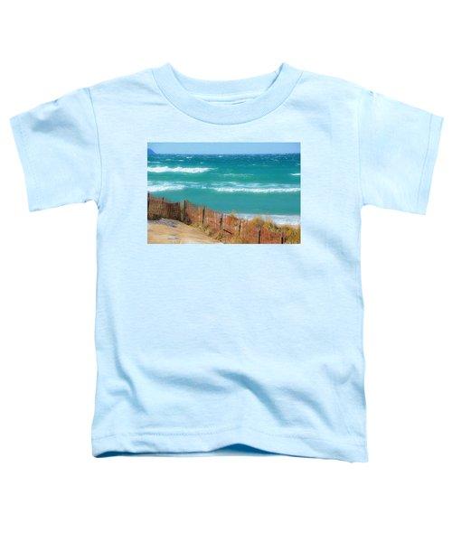 Windy Day On Lake Michigan Toddler T-Shirt
