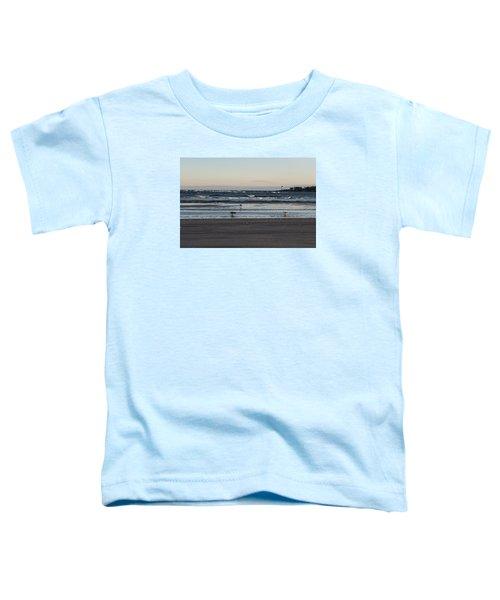 Wingaersheek Beach Seagulls At Sunrise Toddler T-Shirt