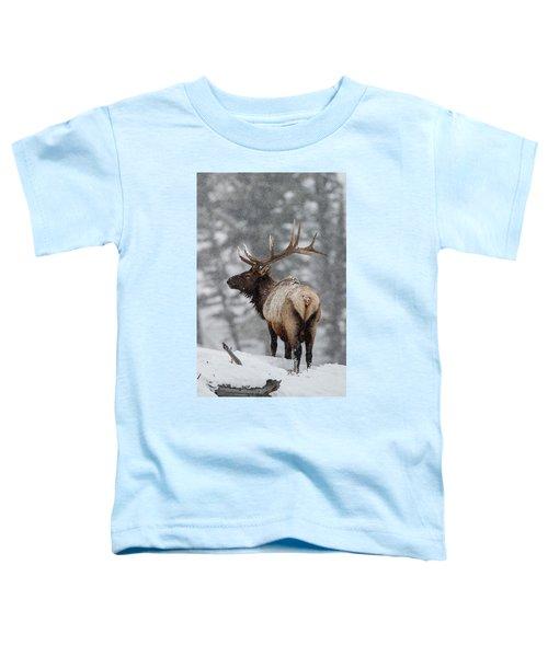 Winter Bull Elk Toddler T-Shirt