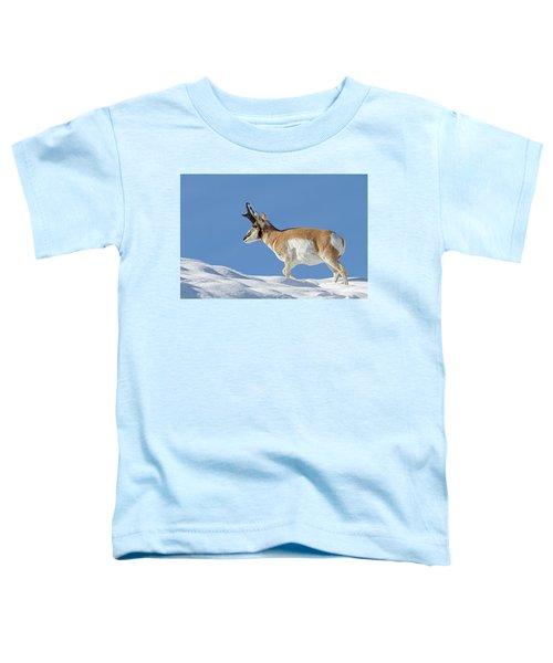 Winter Pronghorn Buck Toddler T-Shirt
