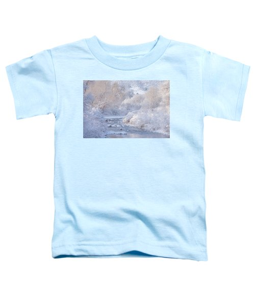 Winter Wonderland - Colorado Toddler T-Shirt