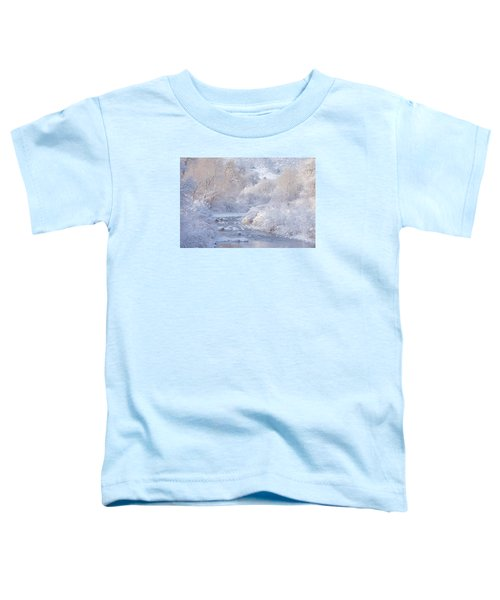 Winter Wonderland - Colorado Toddler T-Shirt