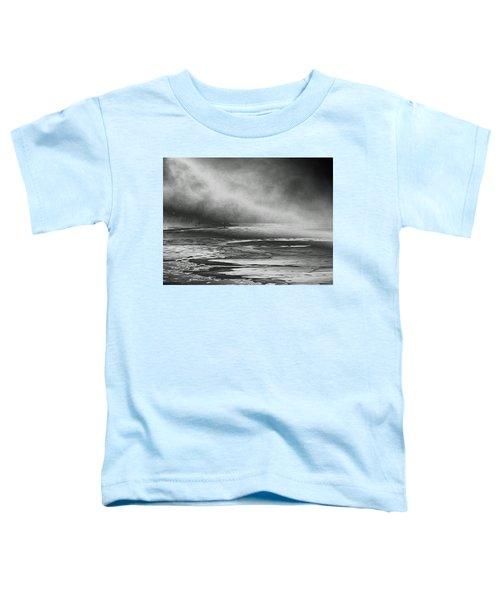 Winter's Song Toddler T-Shirt