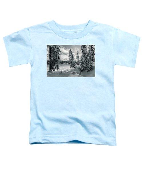 Winter Wonderland Harz In Monochrome Toddler T-Shirt