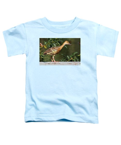 Young Duck Toddler T-Shirt
